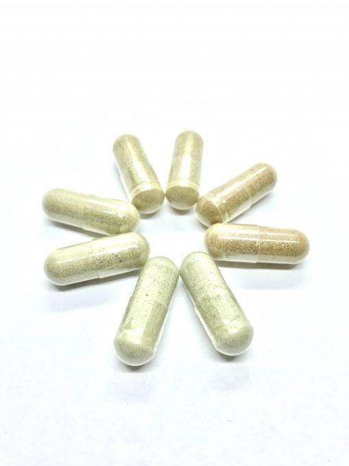 Microdose: Variety Pack